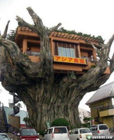 cool-bizarre-restaurants-9.jpg