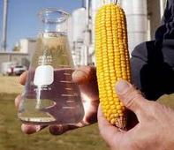 corn_ethanol38.jpg