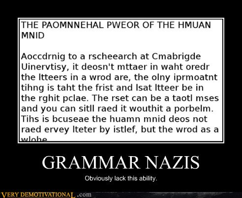 demotivational-posters-grammar-nazis.jpg
