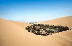 desert_oasis.jpg