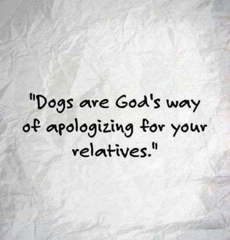 dogshappy-hour-20170418-107.jpg