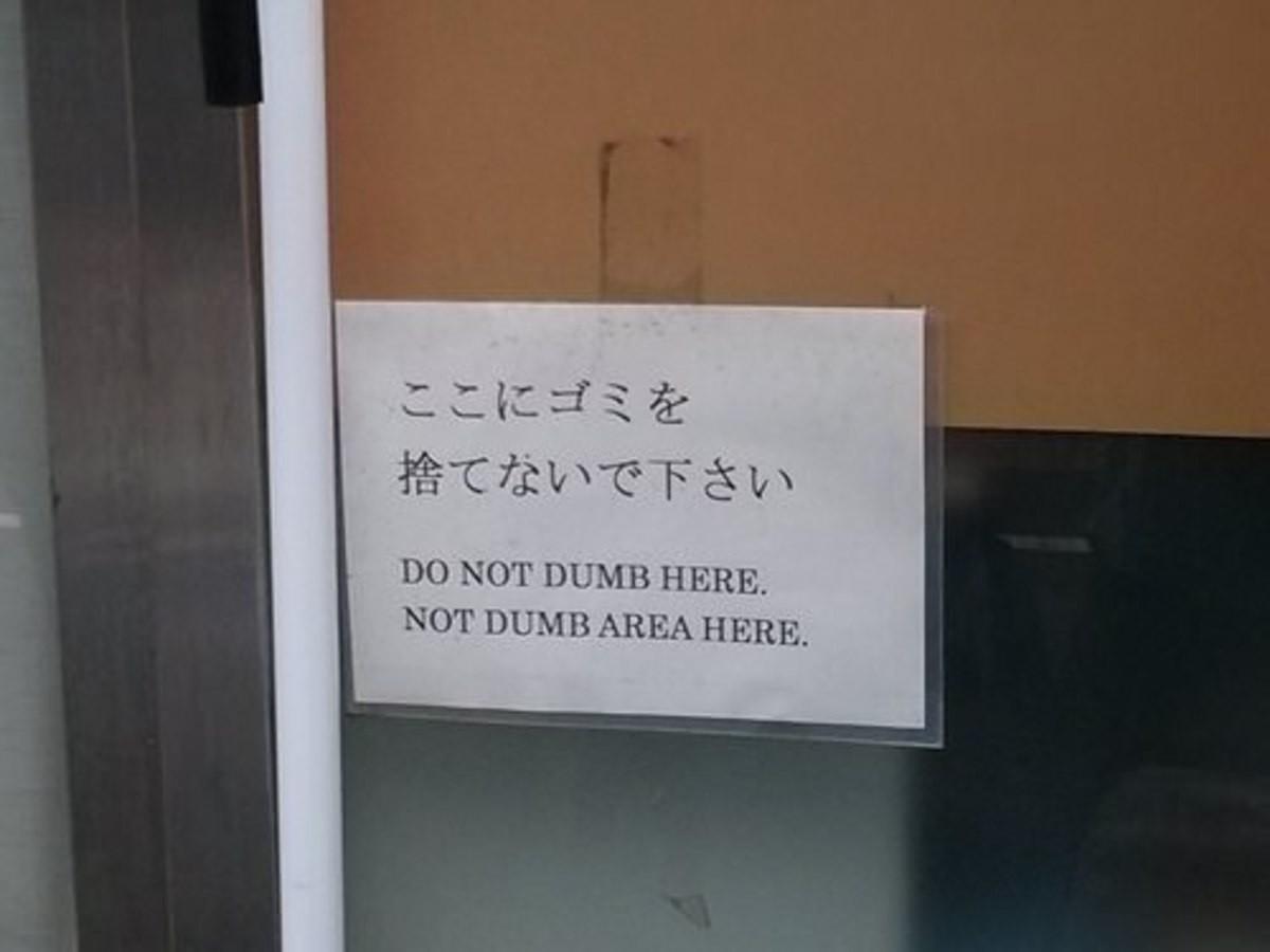 dumb.jpg