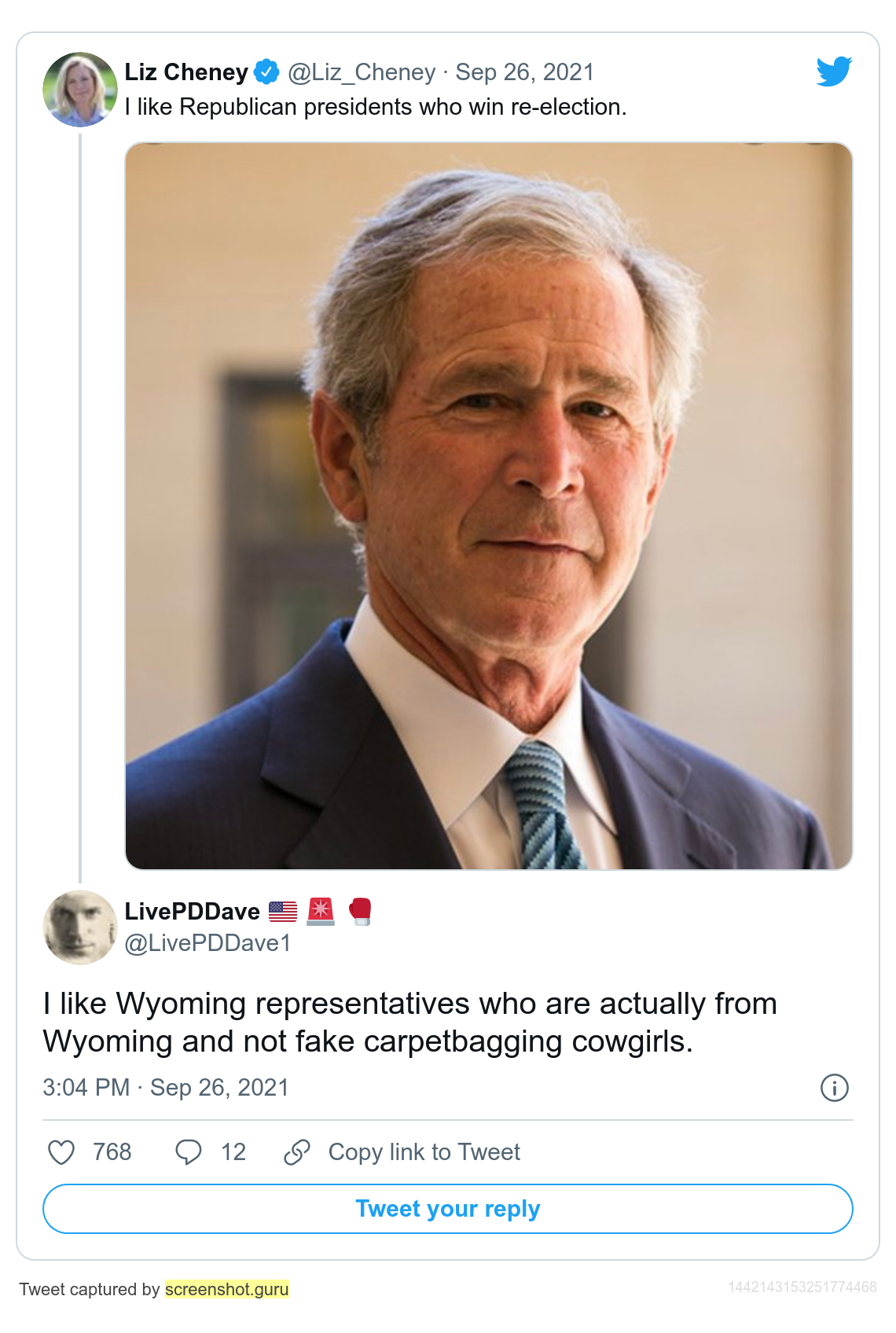fakeconservativecowgirl.png