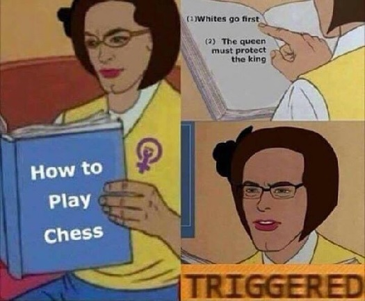 femininsts chess.jpg