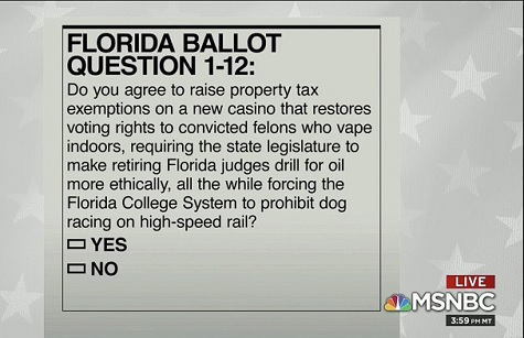 florida ballot question.jpg