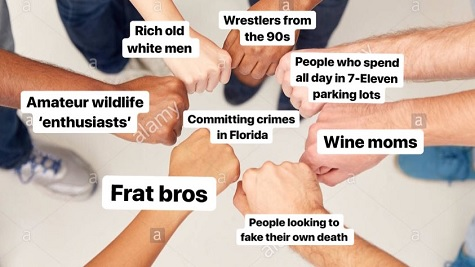 florida man taxonomy.jpg