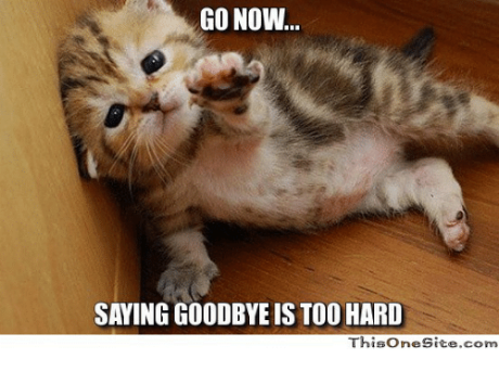go-now-saying-goodbye-is-too-hard-thisonesite-com-4670964.png