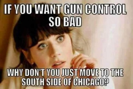 gun control south side.jpg