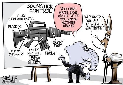 gun-control-legislation-cartoon-scaled.jpg