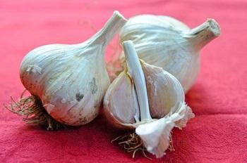 hardneck-garlic.jpg