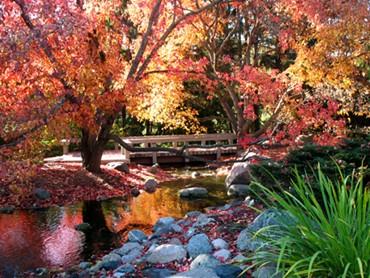 landscapearboretum.jpg