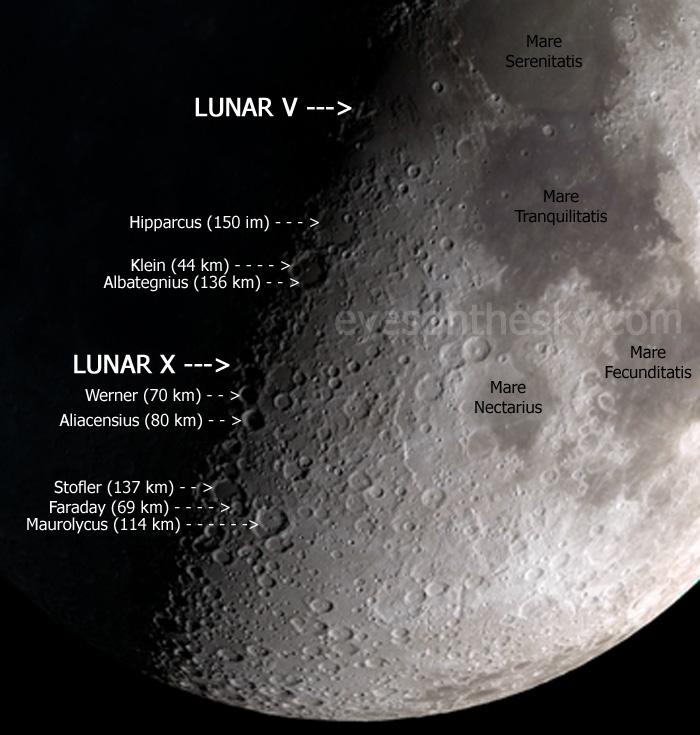 lunarxandygraphic.jpg