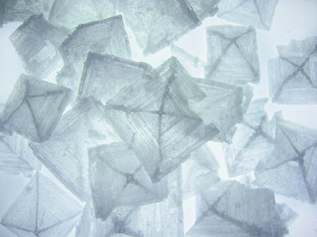 maldon sea salt crystals.jpg
