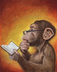 monkey reading book.jpg