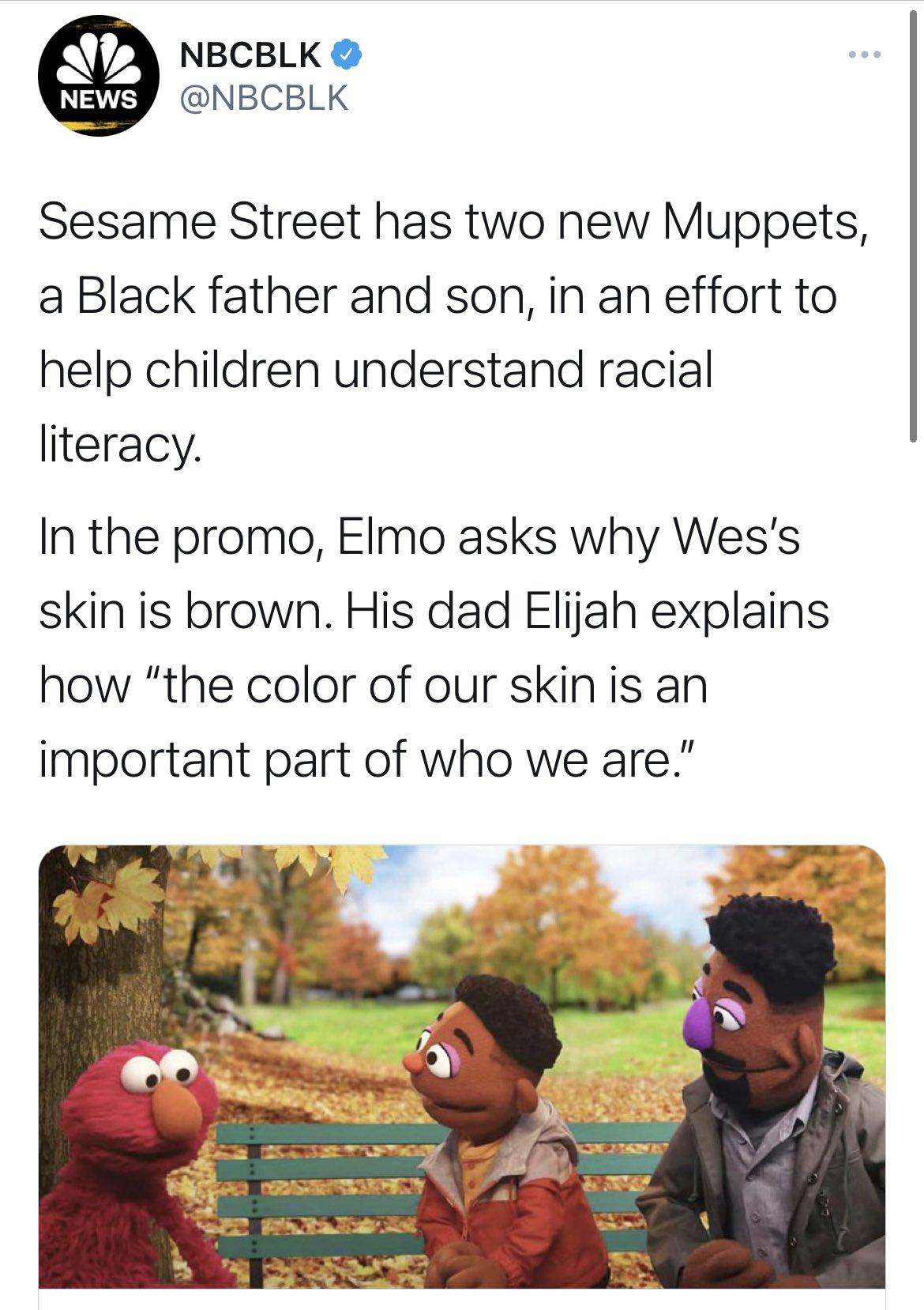 muppetsracism.jpg