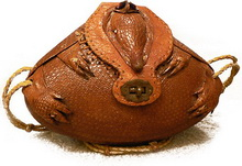 my-armadillo-handbag.jpg