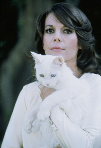 natalie_wood_kitteh.jpg