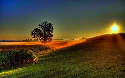 nature-landscapes_widewallpaper_a-new-dawn-awaits-520.jpg