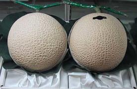 nice_melons.jpg