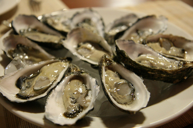 oysters10.jpg