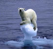 polarbearagw.jpg