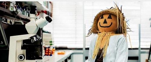 pumpkinScience.jpg