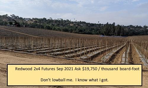 redwood_futures.jpg