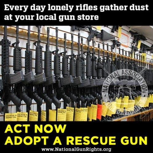 rescuegun.jpg