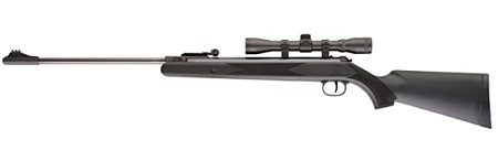 ruger air rifle scaled 012421.jpg