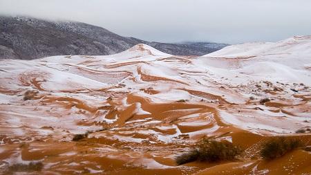 sahara-snow6.jpg