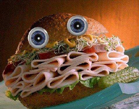 sandwichforskippy.jpg