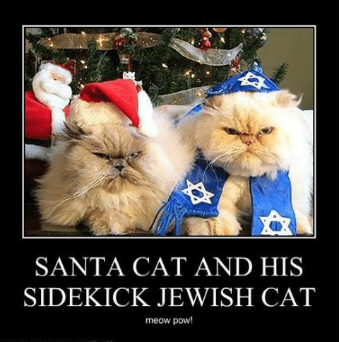 santa-cat-and-his-sidekick-jewish-cat-meow-pow-ioanhaschee2-11433026.png