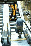scorpion_escalator.jpg