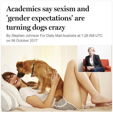 sexism harmful to dogs.jpg