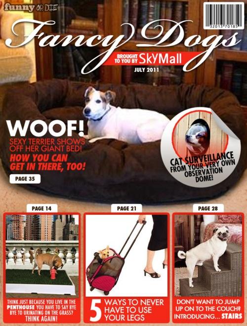 skymall-dogs-20110708-164308.jpg