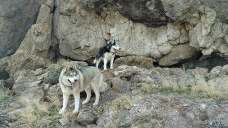 small dogs tufa deposit.jpg