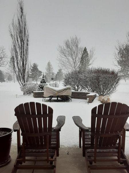snowut.jpg