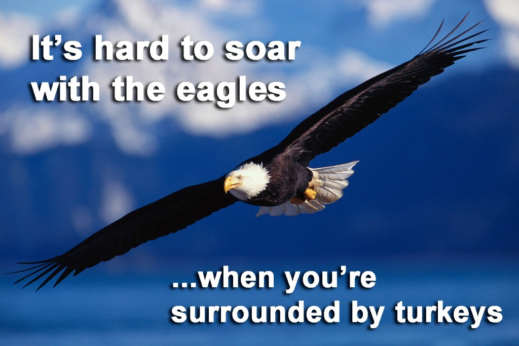 soar-with-eagles-1024x683.jpg