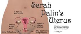 sp_uterus.png
