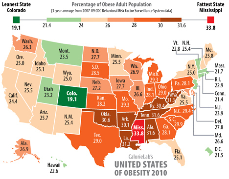 the-united-states-of-obesity-3670-1289507664-13.jpg