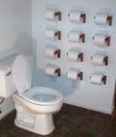 toilet-paper-toilet.jpg