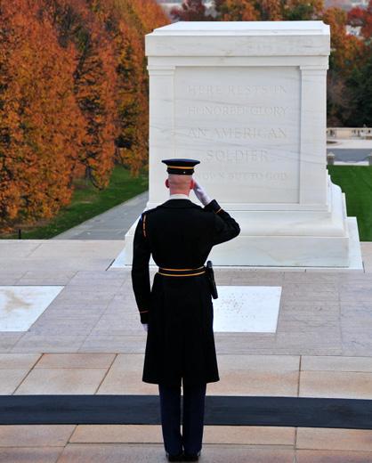 tomb-unknown-soldier-pictureafda.jpg