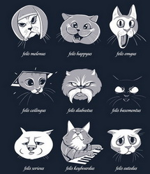 types-of-internet-cats-18803-1296507386-41.jpg