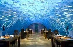 undersea-restaurant-1.jpg