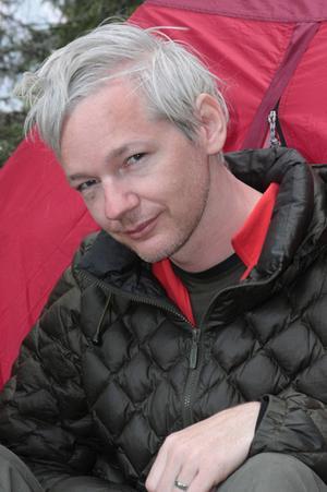 wikileaks_narrowweb__300x451,0.jpg