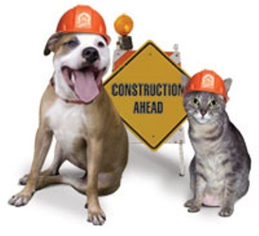 zz dog-and-cat-construction.jpg