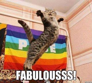 fabulouscat.jpg